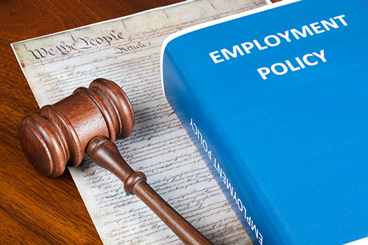 Employment Policy image for Employment Law website